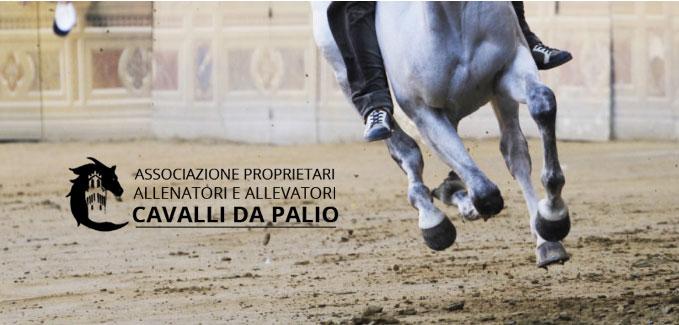 Palio di Siena, Associazione Proprietari, Allenatori Cavalli Palio: Oggi 15/02 Incontro a Palazzo Pubblico fra il Sindaco De Mossi e MassimilianoErmini