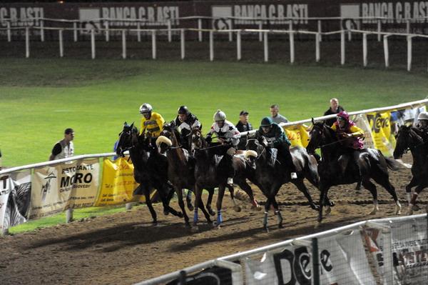 Palio di Asti: I cavalli iscritti alle corse di addestramento di sabato12/06
