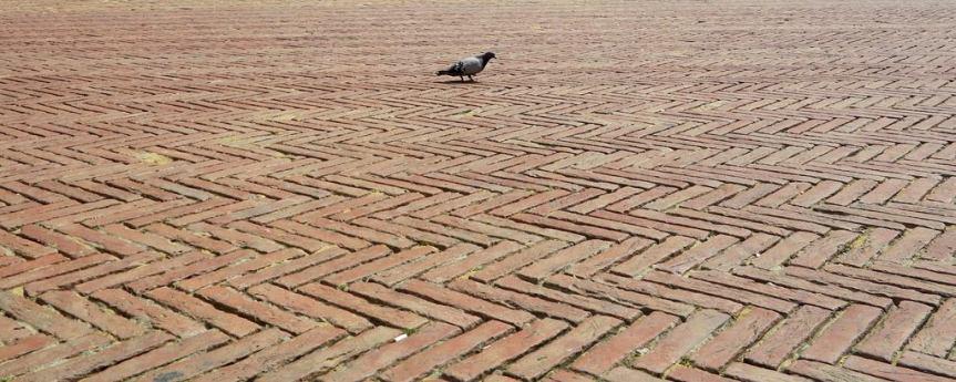 Palio di Siena: StornelliSenesi