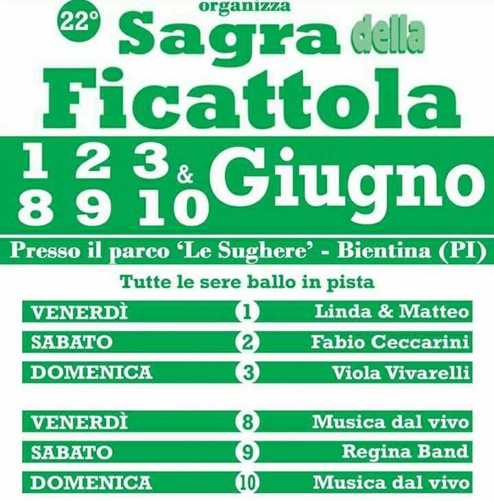 """palio di Bientina, Contrada Puntone: 8-9-10/06 """"Sagra delle Ficattole"""""""