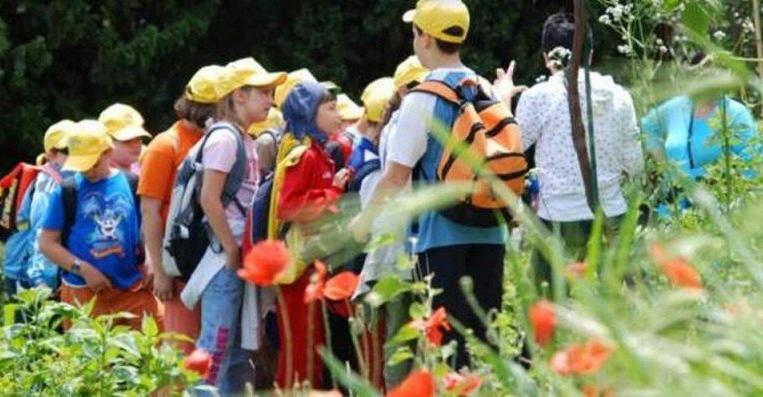 Siena, Famiglie: Campi estivi per ragazzi all'Orto botanico e aiFisiocritici