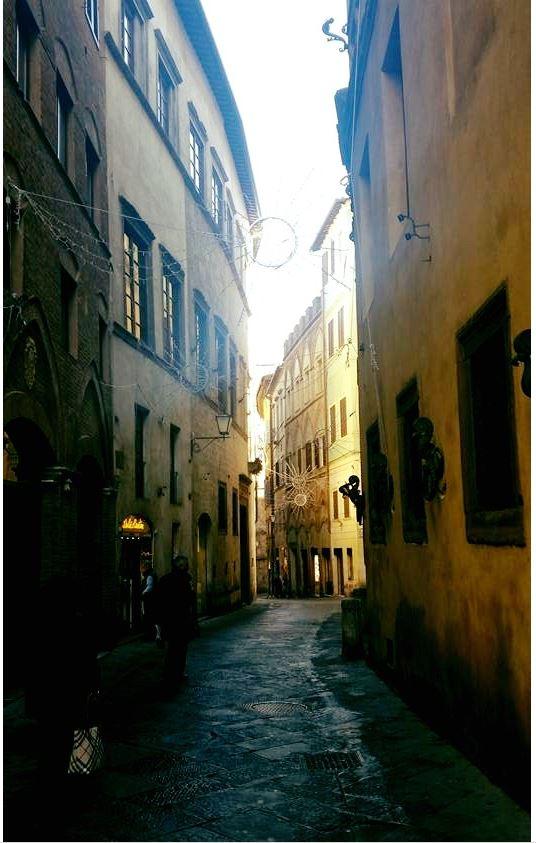 Angoli pittoreschi di Siena: Via deiPellegrini