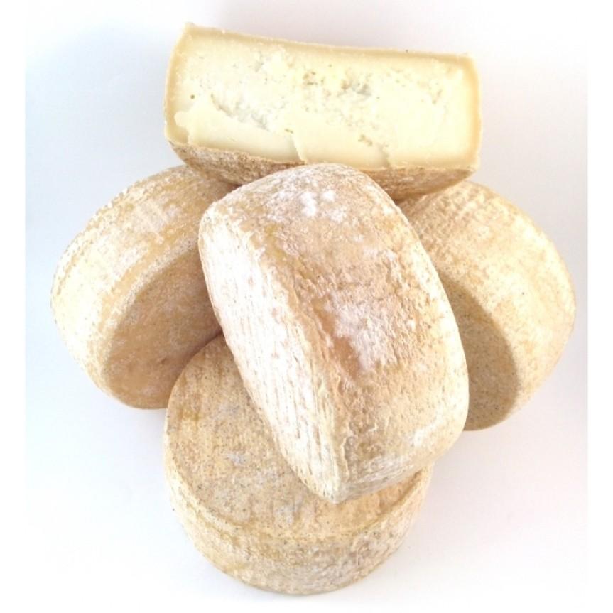 Gastronomia, Grosseto: Il primo formaggio biologico maremmano in vendita daConad