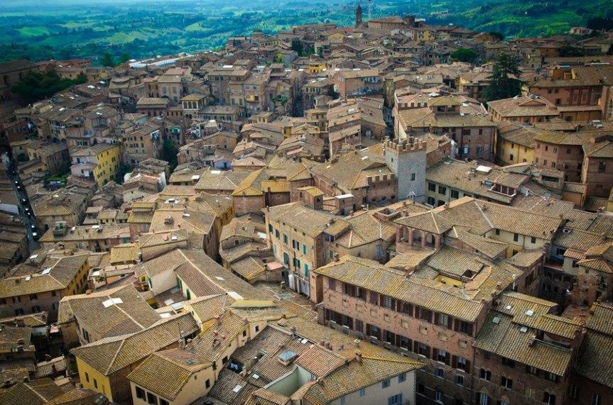 Siena: Operazioni di disinfestazione contro la zanzaratigre