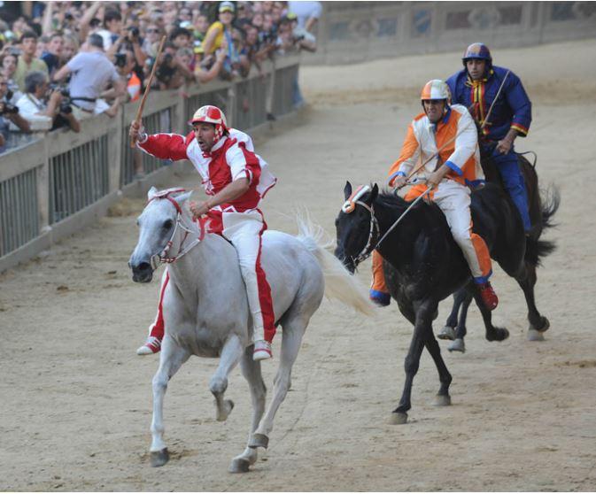"""Siena: I cavalli del Palio fra i protagonisti de """"La Fattoria inFortezza"""""""