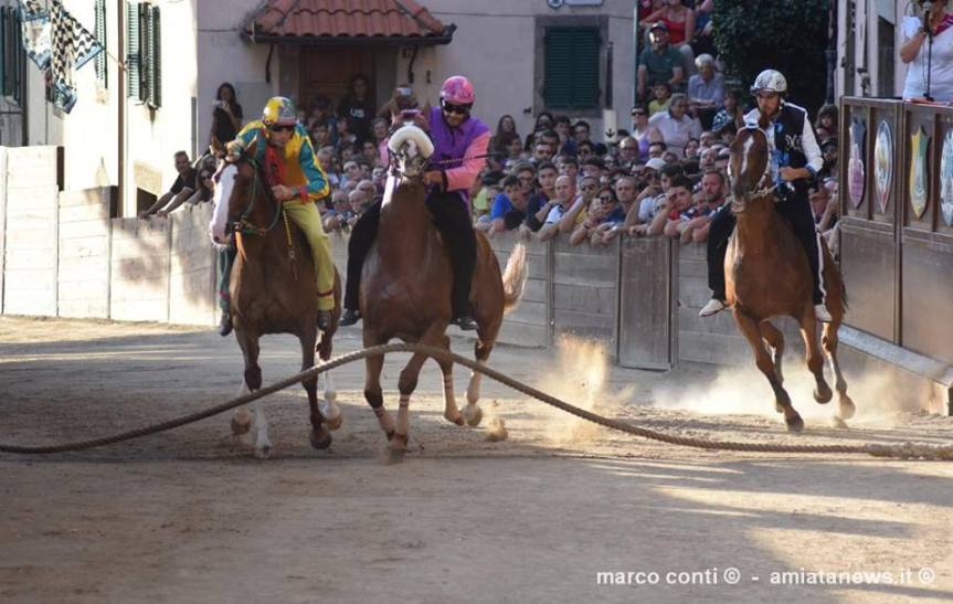 Palio di Castel del Piano: 06/09 Ecco le monte dei cavalli che effettueranno laTratta