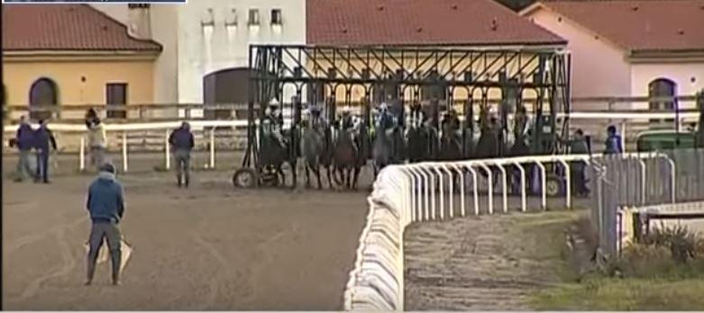 Ippica, Follonica: 03/07 Partenti 3^, 6^ e 7^ Corsa per cavalliAnglo-Arabi