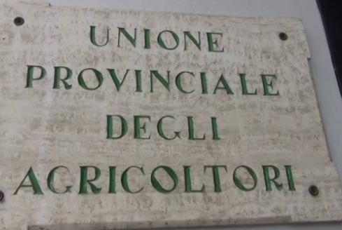 "Siena, Premio ""Terra di Siena"" a Lega Tumori, Angelo Riccaboni e TommasoMarino"