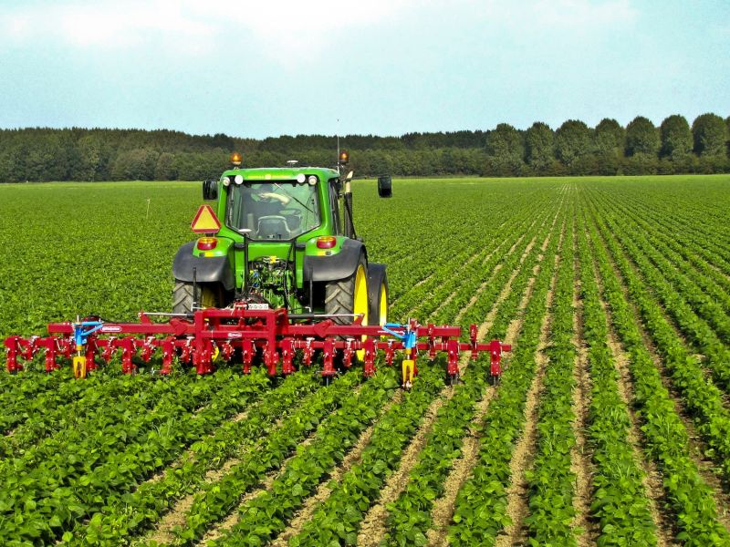 Toscana: Regione, in arrivo indennità alle imprese agricole in aree montane esvantaggiate