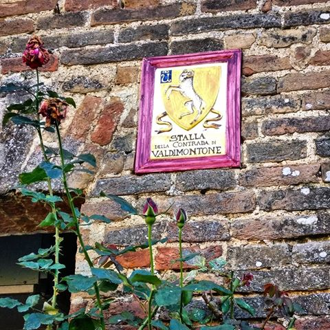 Siena, Contrada del Valdimontone: 17/01 Cena dellaStalla