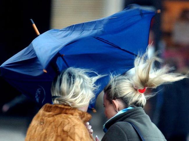 Toscana. Allerta Meteo: Codice giallo per vento su tutta la Toscana per sabato 23febbraio