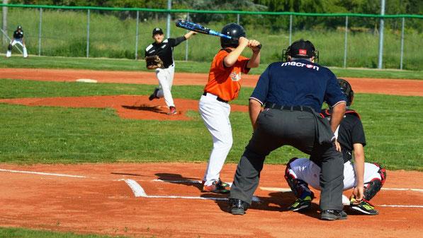 Siena: Baseball, parte online il corso perclassificatore