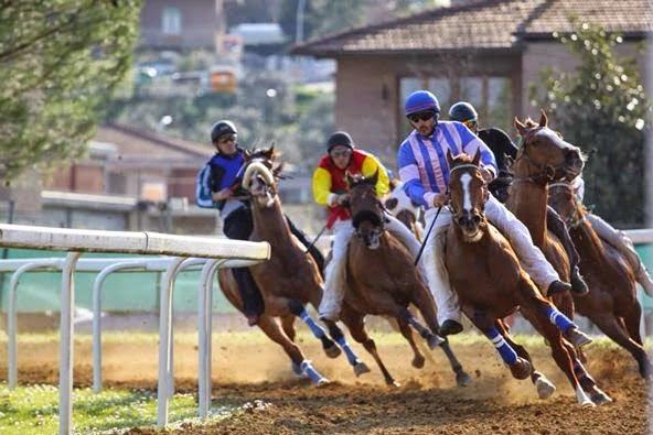 Corse in Provincia: Ufficializzate le date delle Corse a Monteroni d'Arbia, si correrà il 17/03 e il25/04