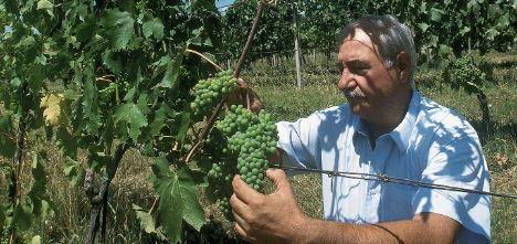 Provincia di Siena: Il mondo del vino saluta Gianfranco Soldera, produttore icona di Montalcino, con CaseBasse