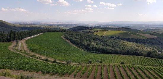 Provincia di Siena: Tassa di soggiorno. Caro il mio Chianti, solo Radda eliminal'imposta