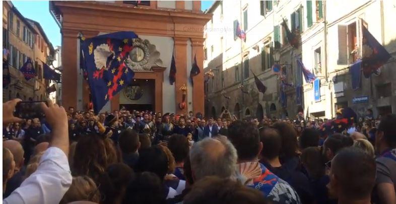 Palio di Siena: Palio di Siena straordinario nobile contrada del nicchio sbandierata incontrada