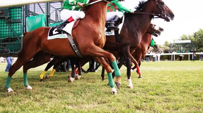 Ippica, Chilivani: Domani 08/06 Partenti 4^ e 6^ Corsa per cavalliAnglo-Arabi