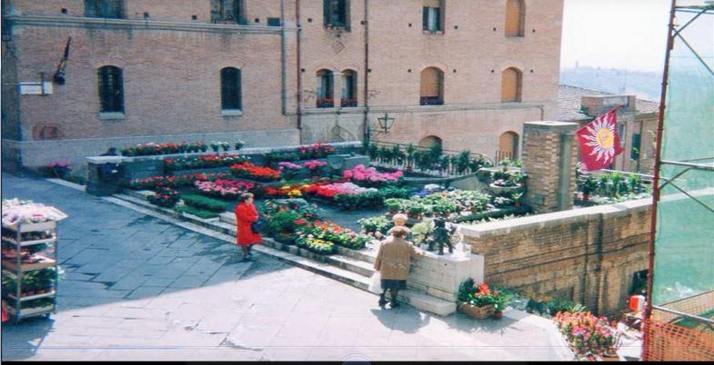 """Siena, Contrada della Torre: 12-13-14/04 """"33^ Mostra deiFiori"""""""