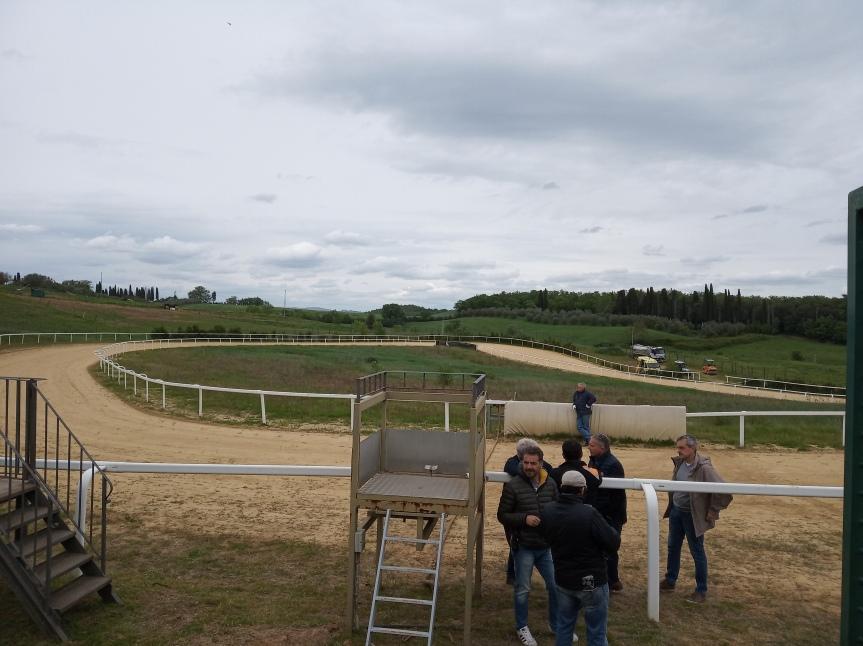 Palio di Siena: Mociano riapre, il brivido dei cavalli algaloppo