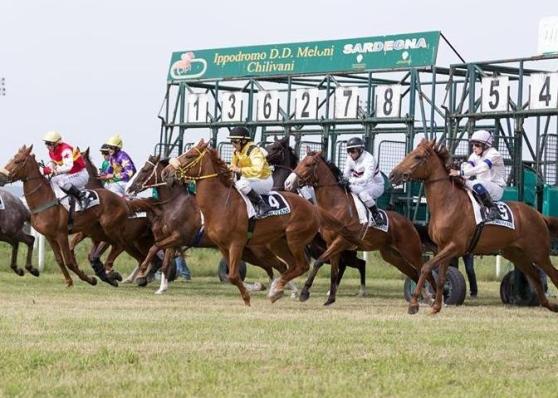 Ippica, Chilivani: 03/06 Partenti 3^, 4^ e 6^ Corsa per cavalliAnglo-Arabi
