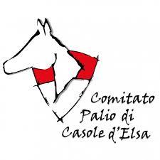 Palio di Casole d'Elsa: Oggi 12/07 dalle ore 17.00 le 6 Batterie diSelezione