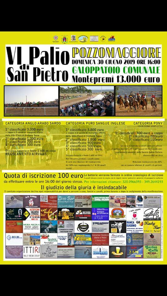 Palii : 30/06 VI° Palio di San Pietro a Pozzomaggiore Categoria Airvaas, Categoria P.S.I. e CategoriaPony