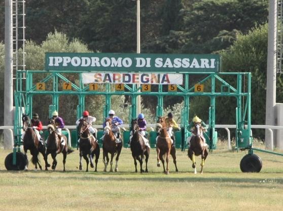 Ippica, Sassari: 02/08 Partenti 2,4 e 6 Corsa per cavalliAnglo-Arabi