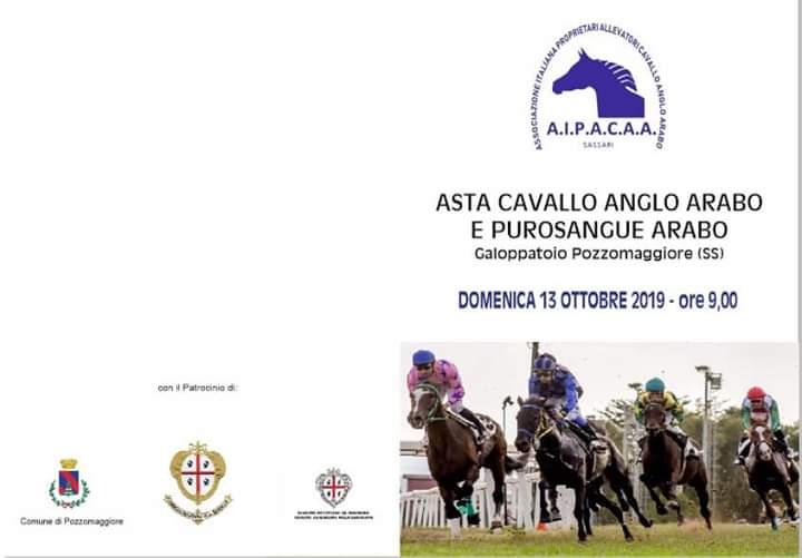 Ippica, AIPACAA: 13/09 Asta Cavallo Anglo-Arabo e Purosangue Arabo. Libretto aggiornato edefinitivo