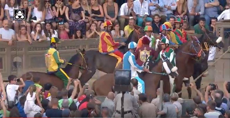 """Palio di Siena, l'avvocato Cei: """"Animalisti querelati per difendere tutti isenesi"""""""