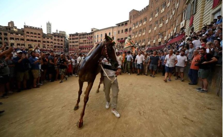 Sardegna, A Sedilo non solo Ardia: Tre cavalli plurivincitori al Palio diSiena