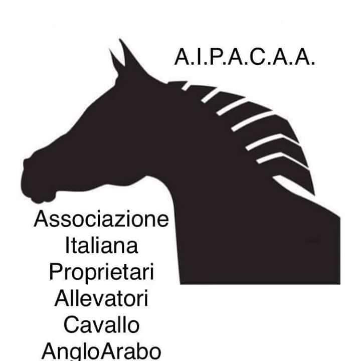 Ippica, Sardegna, Aipacaa: Comunicato Stampa in dataodierna