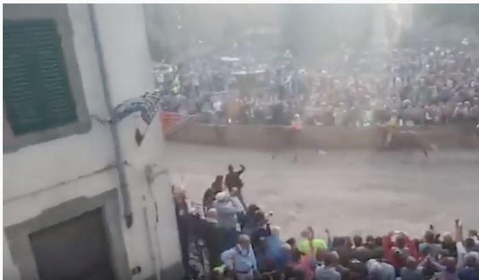 Palio di Castel del Piano: La vittoria della Contrada del Borgo di ieri08/09