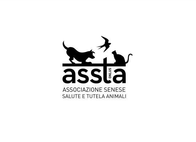"""Siena: """"Can…Assta"""", con gli amici a quattro zampe nel cuore diSiena"""