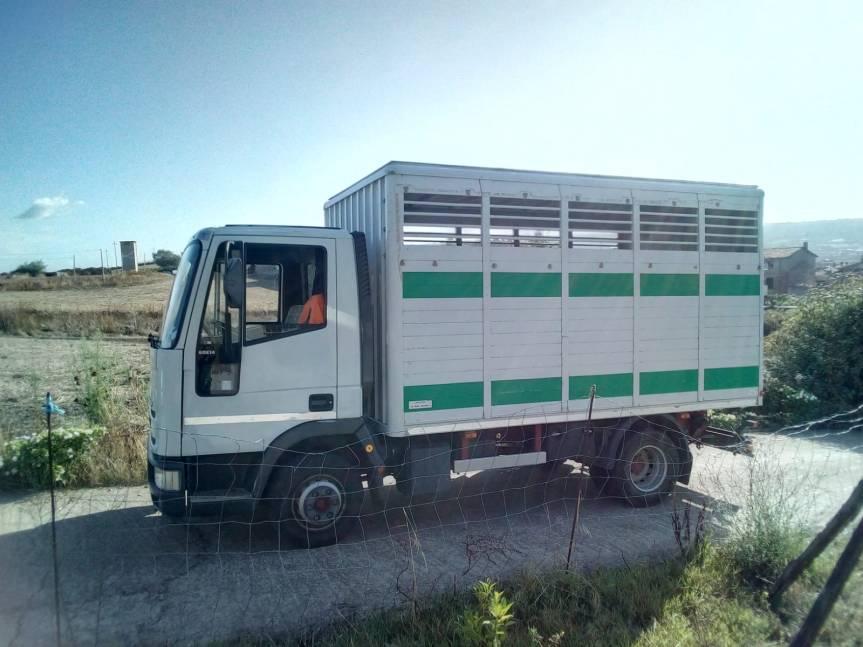 Ippica, Sardegna: In vendita camion percavalli