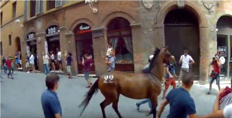 Palio di Siena: Rocco Nice alla Torre, dabrividi!