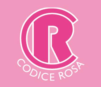 """Italia, Cresce la violenza di genere nel senese. Doretti (Codice Rosa): """"Oltre a denunciare, va abbattuta lasolitudine"""""""