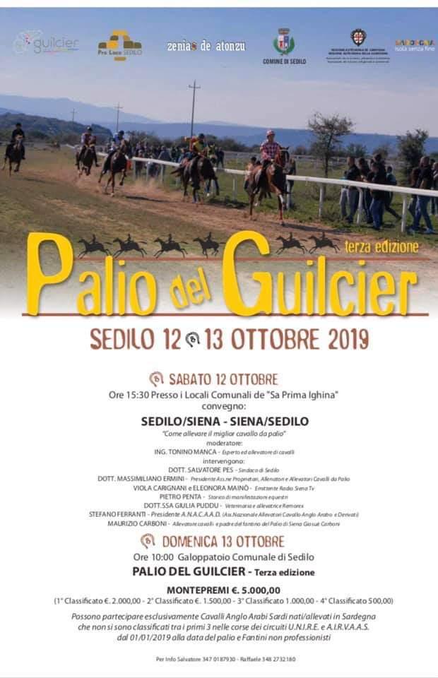Palii, Associazione Cavalli Palio: 12/10 Il Presidente Ermini interverrà sul dibattito sul cavallo da Palio durante il Palio delGuilcer