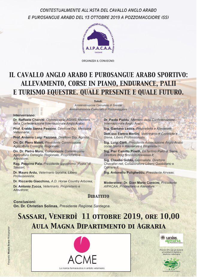 Sassari, Aipacaa: 11/10 Convegno sul Cavallo Anglo-Arabo e Purosangue AraboSportivo
