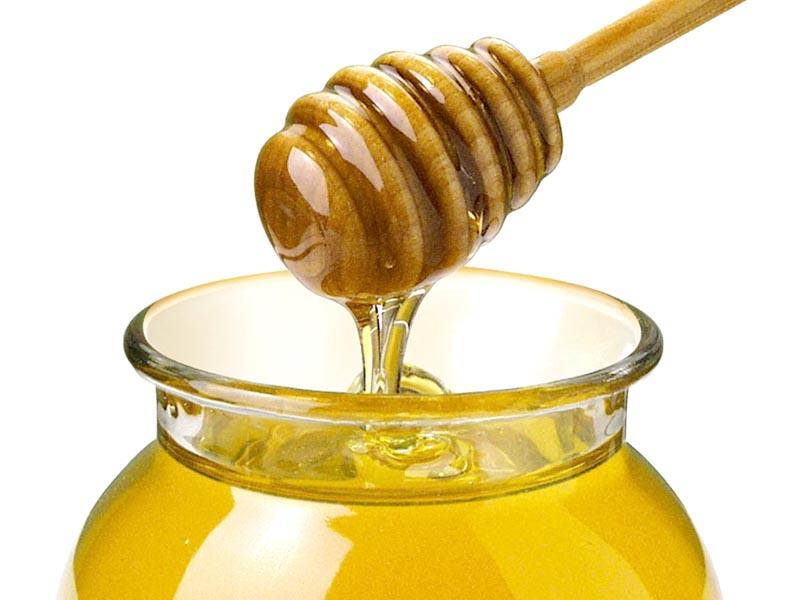 Provincia di Siena, Montalcino: Crisi del miele, produzione aiminimi