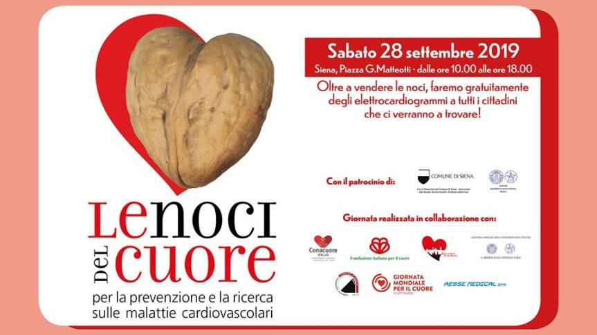 """Siena: Oggi 28/09 tornano """"Le noci delcuore"""""""