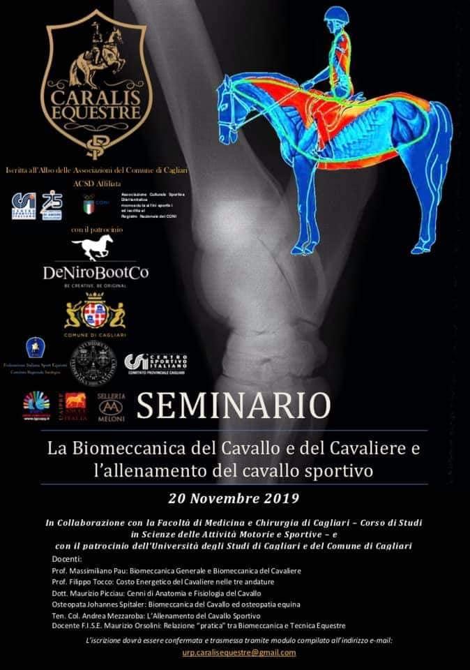 """Ippica, Sardegna: 20/11 Seminario """"la Biomeccanica del Cavallo e del Cavaliere e l'allenamento del cavallosportivo"""""""