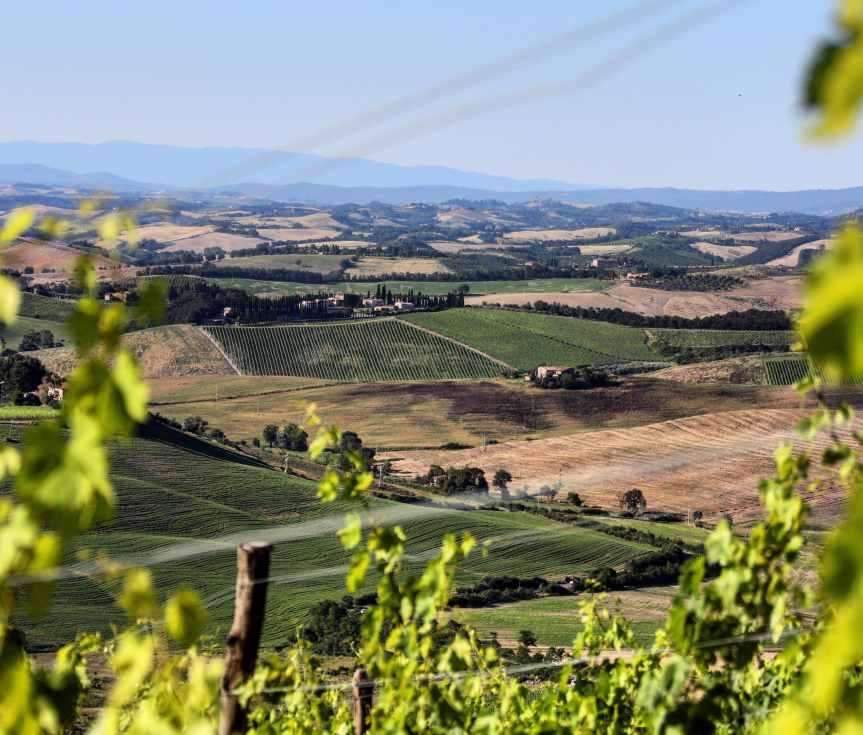 Provincia di Siena: Turismo, Montalcino pronta agli arrivi made inItaly