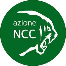 """Toscana: """"Falliremo, tutto cancellato fino a Marzo2021″"""