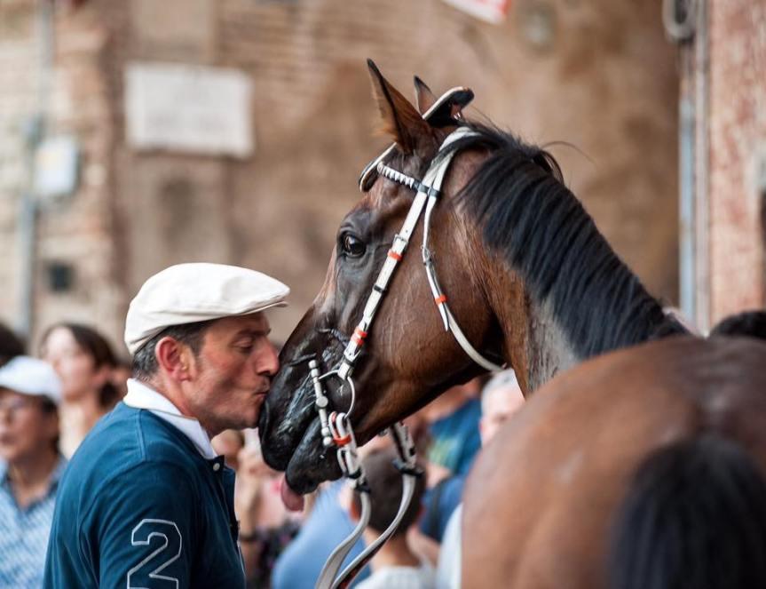 """Palio di Siena, Passione barbaresco. """"La stalla, luogosacro"""""""