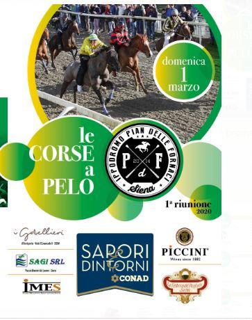 Siena, Corse in Provincia, Pian delle Fornaci: Ecco qua le Batterie delle Corse di domenica01/03