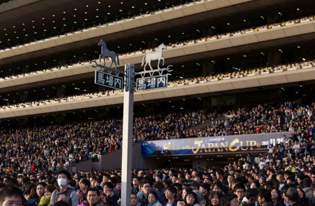 Ippica, Giappone: Domenica il Tenno Sho con Fierement favorito. Ha corso anche l'Arc deTriomphe