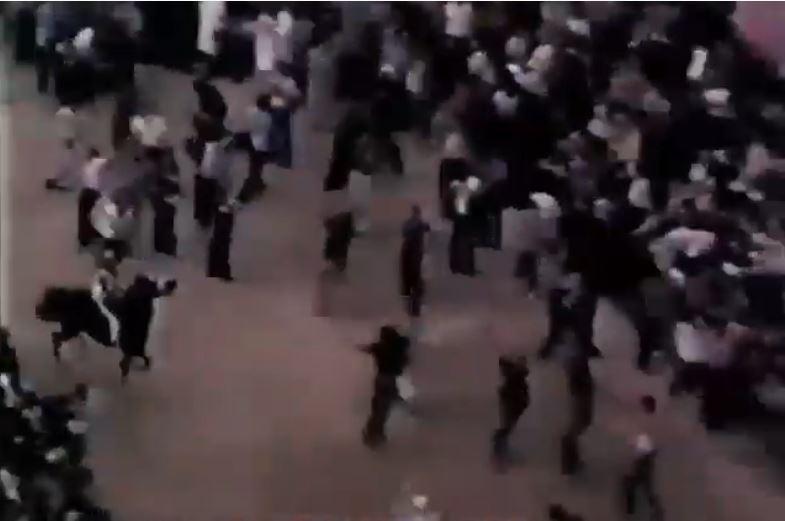 Palio di Siena: Palio 16 agosto1977