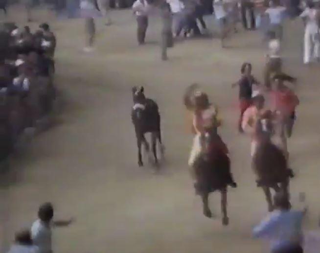 Palio di Siena: Palio 16 agosto1982