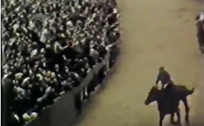 Palio di Siena: Palio 5 giugno1961