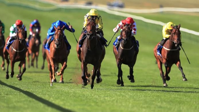 Ippica, Inghilterra: Giovedì le Dante Stakes con Highest Ground. A Newmarket comincia il July Meeting..